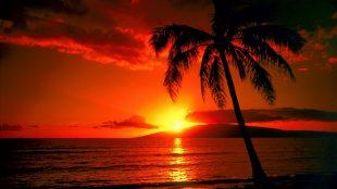 Hawaii 2016 CPCU Conferment